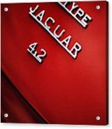 Jaguar E Type Acrylic Print by Tim Gainey