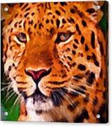 Jaguar Acrylic Print by Michael Pickett