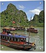 Junk Boats In Halong Bay Acrylic Print by Sami Sarkis