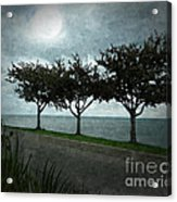 Just Another Gloomy Day Acrylic Print by Bedros Awak