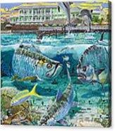 Key Largo Grand Slam Acrylic Print by Carey Chen