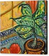 Kitchen Company Acrylic Print by Louise Burkhardt