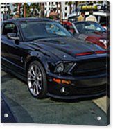 Kitt 2008 Acrylic Print by Tommy Anderson