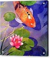 Koi Pond Acrylic Print by Robert Hooper