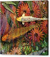 Kona Kurry Acrylic Print by Christopher Beikmann
