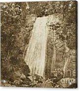 La Coca Falls El Yunque National Rainforest Puerto Rico Print Vintage Acrylic Print by Shawn O'Brien