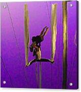 La Loupiote In Lavender Acrylic Print by Anne Mott