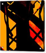 Ladderback Flamenco Acrylic Print by Lin Haring