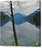 Lake Crescent - Washington - 01 Acrylic Print by Gregory Dyer