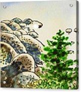 Lake Tahoe - California Sketchbook Project Acrylic Print by Irina Sztukowski