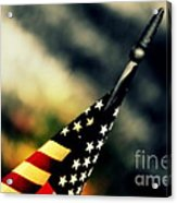 Land Of The Free - 2 Acrylic Print by Susanne Van Hulst