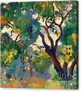 Landscape At St Tropez  1 Acrylic Print by Pg Reproductions