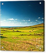 Landscape At Summer Acrylic Print by Boon Mee