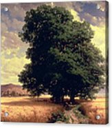 Landscape With Oaks Acrylic Print by Alexandre Calame