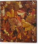 Last Fall In Monroe Acrylic Print by Thu Nguyen