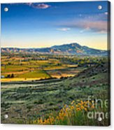 Late Spring Time View Acrylic Print by Robert Bales