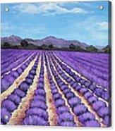 Lavender Field In Provence Acrylic Print by Anastasiya Malakhova