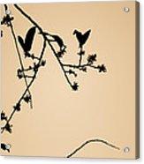 Leaf Birds Acrylic Print by Darryl Dalton