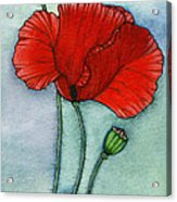 Lest We Forget Acrylic Print by Nora Blansett