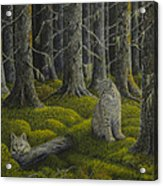 Life In The Woodland Acrylic Print by Veikko Suikkanen