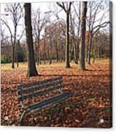 Life's Russet Hue Acrylic Print by Guy Ricketts