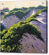 Light Across The Dunes Acrylic Print by Graham Gercken
