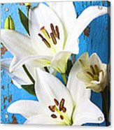 Lilies Against Blue Wall Acrylic Print by Garry Gay