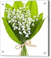 Lily-of-the-valley Bouquet Acrylic Print by Elena Elisseeva