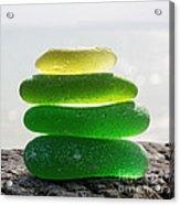 Lime Breeze Acrylic Print by Barbara McMahon