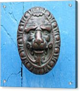 Lion Face Door Knob Acrylic Print by Lainie Wrightson