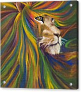 Lion Acrylic Print by Kd Neeley