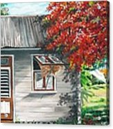 Little West Indian House 1 Acrylic Print by Karin  Dawn Kelshall- Best