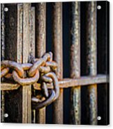 Locked Out Acrylic Print by Carolyn Marshall