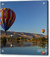 Looking For A Place To Land Acrylic Print by Mike  Dawson