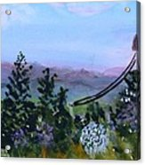 Looking Out From Top Of Jay Peak  Acrylic Print by Donna Walsh