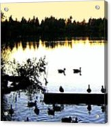 Lost Lagoon At Sundown Acrylic Print by Will Borden