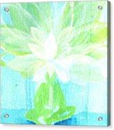 Lotus Petals Awakening Spirit Acrylic Print by Ashleigh Dyan Bayer