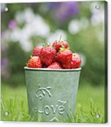 Love Strawberries Acrylic Print by Tim Gainey