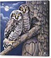 Loving You Acrylic Print by John Zaccheo