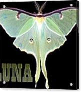 Luna 1 Acrylic Print by Mim White