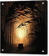 Luray Caverns - 121288 Acrylic Print by DC Photographer