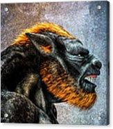 Lycan Acrylic Print by Bob Orsillo