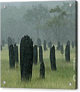 Magnetic Termite Mounds Acrylic Print by Bob Christopher