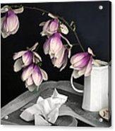 Magnolia Still Acrylic Print by Diana Angstadt