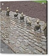 Make Way For Ducklings Acrylic Print by Barbara McDevitt