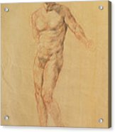 Male Nude 2 Acrylic Print by Becky Kim