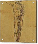 Male Nude 5 Acrylic Print by Becky Kim