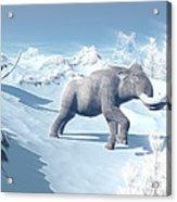 Mammoths Walking Slowly On The Snowy Acrylic Print by Elena Duvernay