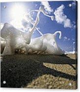 Marching Foam Acrylic Print by Sean Davey