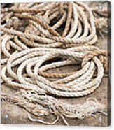 Marine Ropes Beige And Brown Colors Acrylic Print by Matthias Hauser